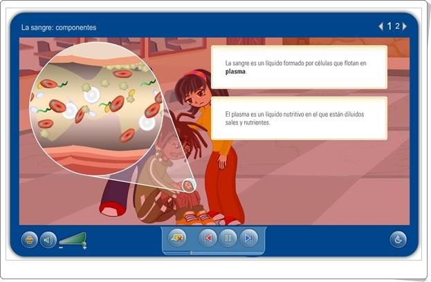 """""""La sangre: componentes"""" (Aplicación interactiva de Ciencias Naturales de Primaria)"""