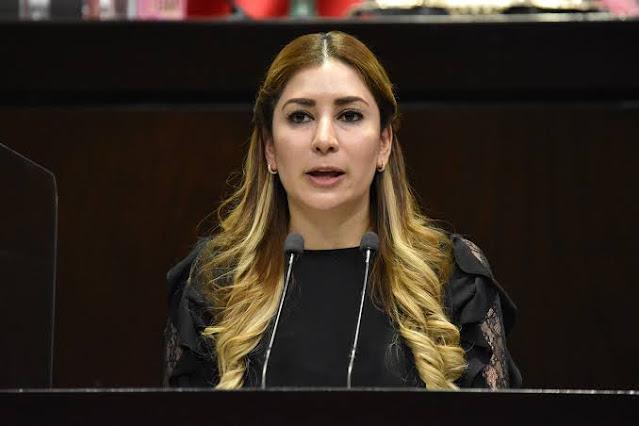 Propone Azucena Rodríguez iniciativa para regular licitaciones públicas del gobierno y erradicar la corrupción