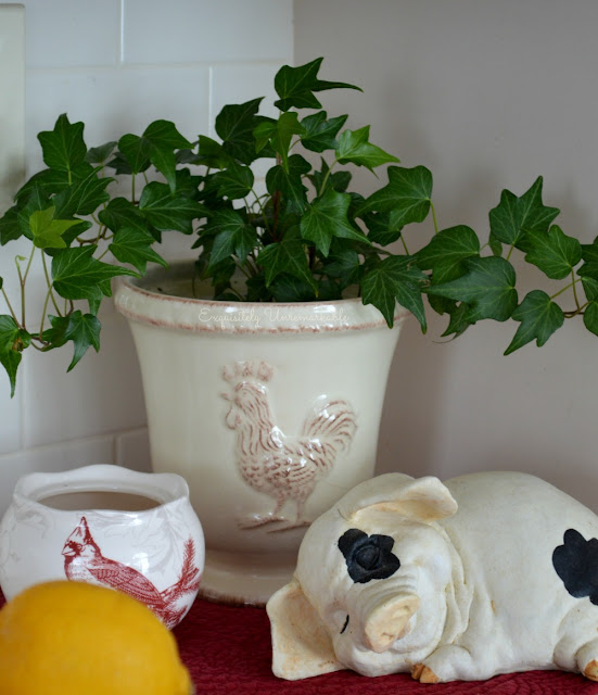 Green Ivy plant and sleeping pig statue on counter