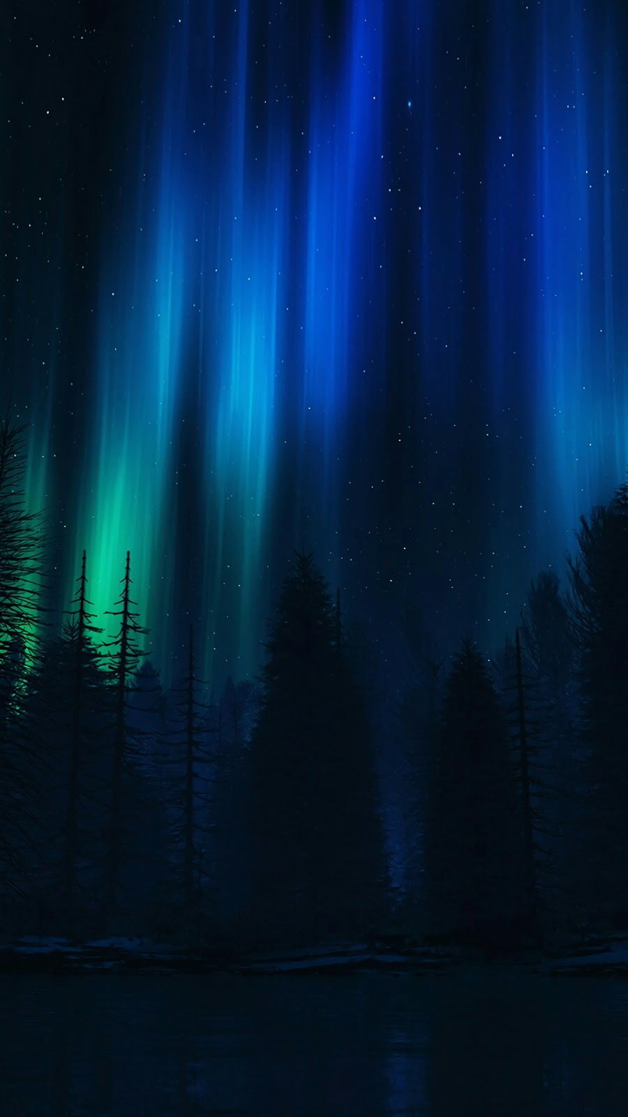 Beautiful aurora night