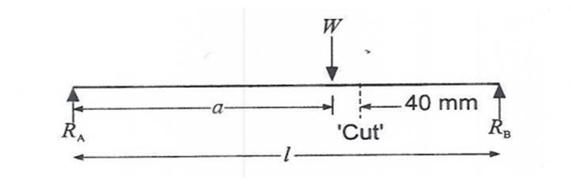 Green Mechanic: Shear Force in a Beam Lab Report