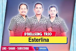 Kunci Gitar Esterlina - D'Bellsing Trio