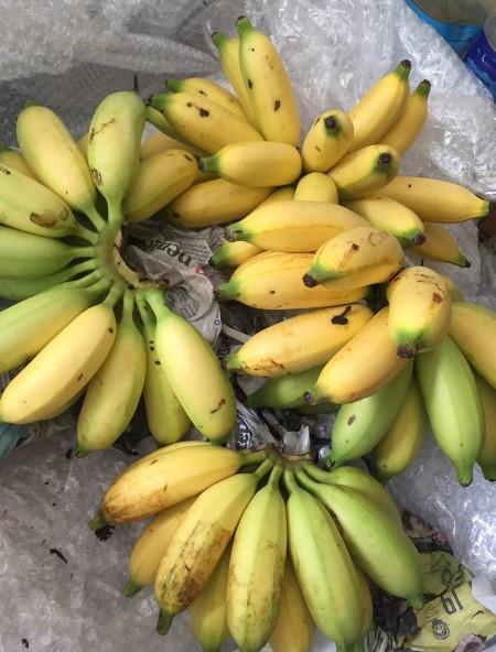 resipi kek pisang gebu, hidangan minum petang, hasil tanaman