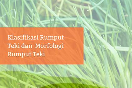 Klasifikasi Rumput Teki dan  Morfologi Rumput Teki