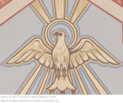 dove, Confirmation