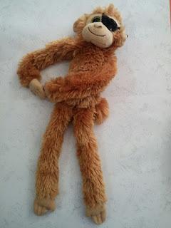 Cerpen Monyet Bermata Satu Karya Azizah