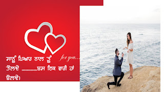 love Punjabi  status