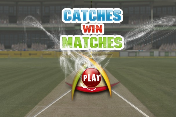 Play Catches Win Matches Cricket Game