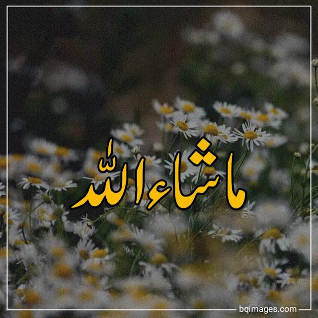 mashallah nice pic