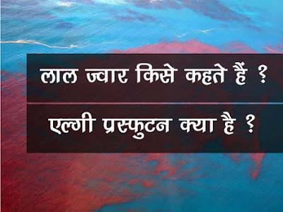 लाल ज्वार किसे कहते हैं   एल्गी प्रस्फुटन क्या है  Algal bloom in Hindi