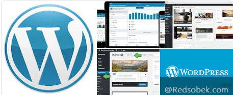 Wordpress Iklan Adsense