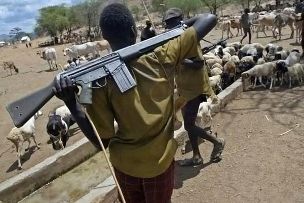 Fulani Herdsmen Kill APC Chieftain, 1 Other Person In Benue, Youths Protest