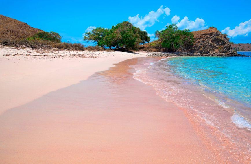 indonezija-plaža-ružičasta plaža-putovanja-travel-otok-komodo