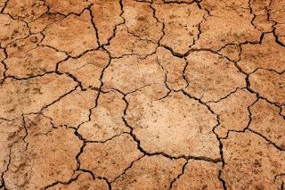 Contoh Tindakan yang Dapat Merusak Kelestarian Alam
