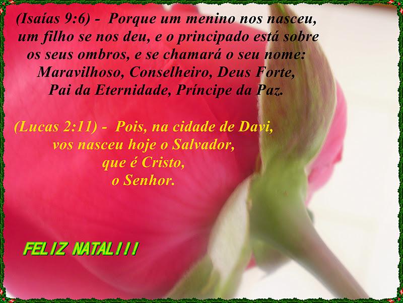 Mensagem Bíblica Para Acalmar O Coração: ABRINDO O CORAÇÃO!!!: MENSAGEM DE NATAL