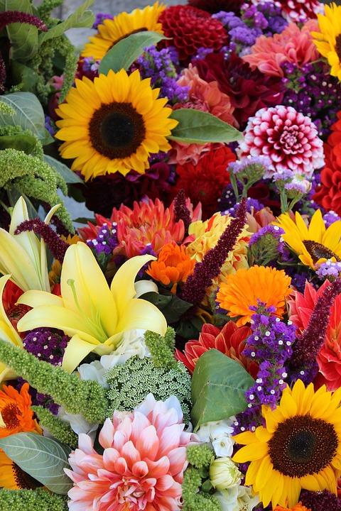 Garden Therapy: Flowers in Gardens