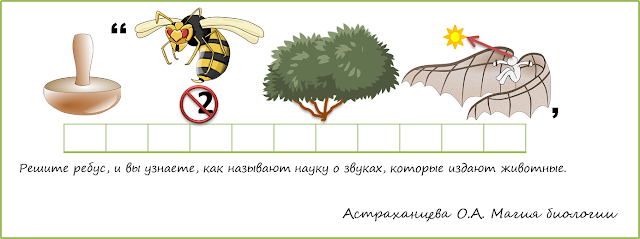 rebus-zanimatelnaya-bioakustika