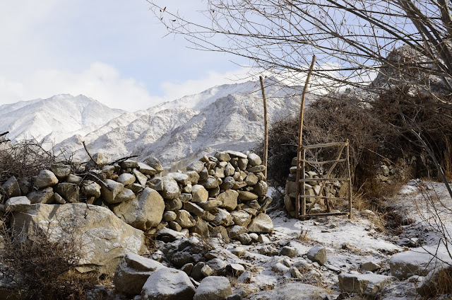 Stone wall and rough gate, Ladakh