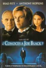 ¿Conoces a Joe Black? (1998) DVDRip Latino
