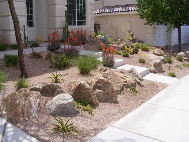 Great Planning For Desert Landscaping Ideas
