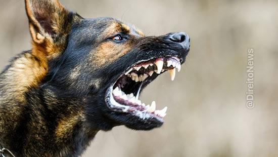 mulher atacada cachorro vizinha indenizada tjdft