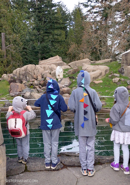 diy dress up sweatshirt costume kids