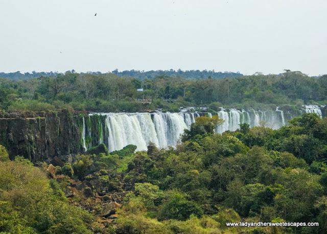 Argentina Flag in Iguazu Falls