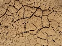 Pengertian Tanah, Profil, Karakteristik, Sifat, Komponen, Pembentukan, Proses, Jenis, Manfaat, dan Pencemarannya