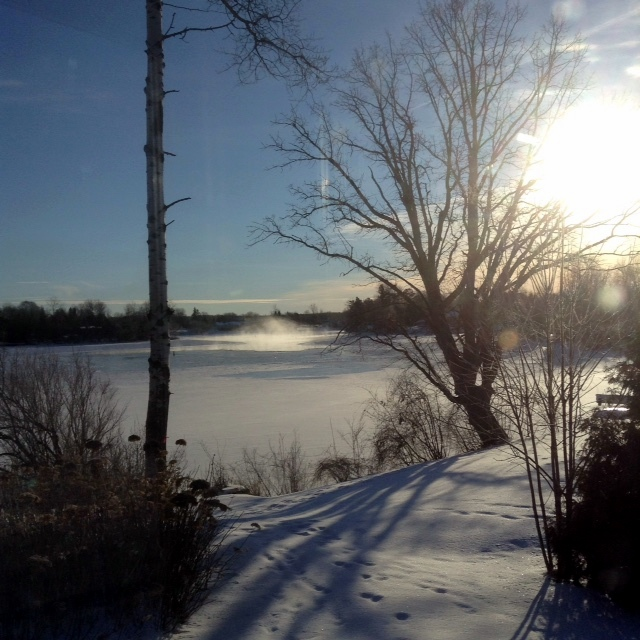winter morning on the Rideau