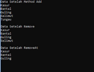 Program List C#