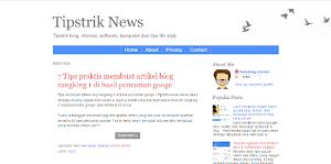 Tips memilih template blog yang benar bagi pemula
