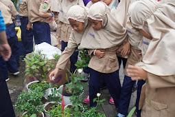 Peringati Hari Lingkungan Hidup Se-Dunia, SD Mutual 2 Ajak Siswanya Hijaukan Sekolah
