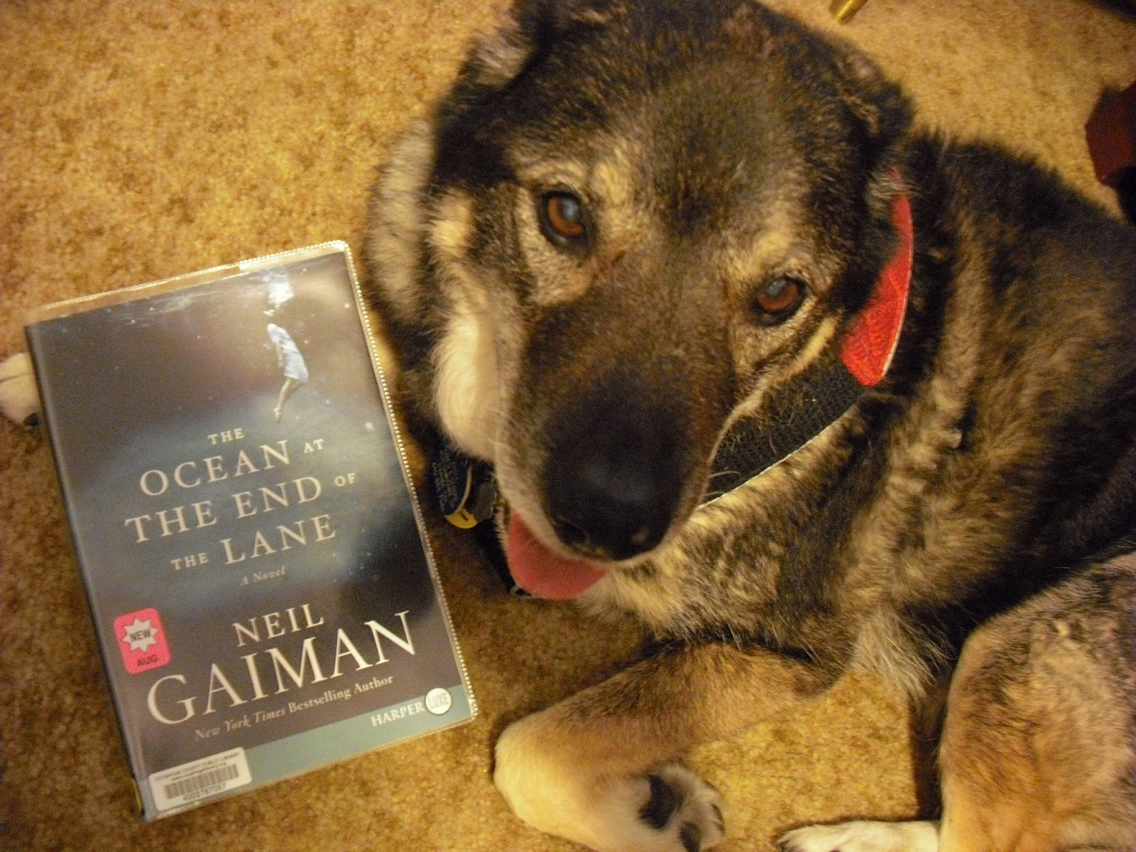 """The Ocean At The End Of The Lane By Neil Gaiman: Grab A Book From Our Stack: """"The Ocean At The End Of The"""