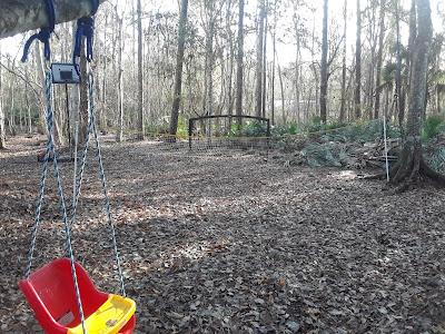 woodland play area