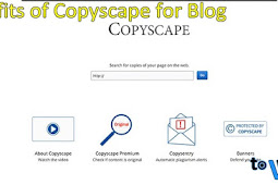 Check Blog Content on Copyscape