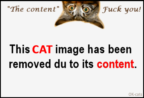 "Photoshopped Cat picture • ""Sorry, this CAT image has been removed du to its content!"" ""'The content' fuck you!"""