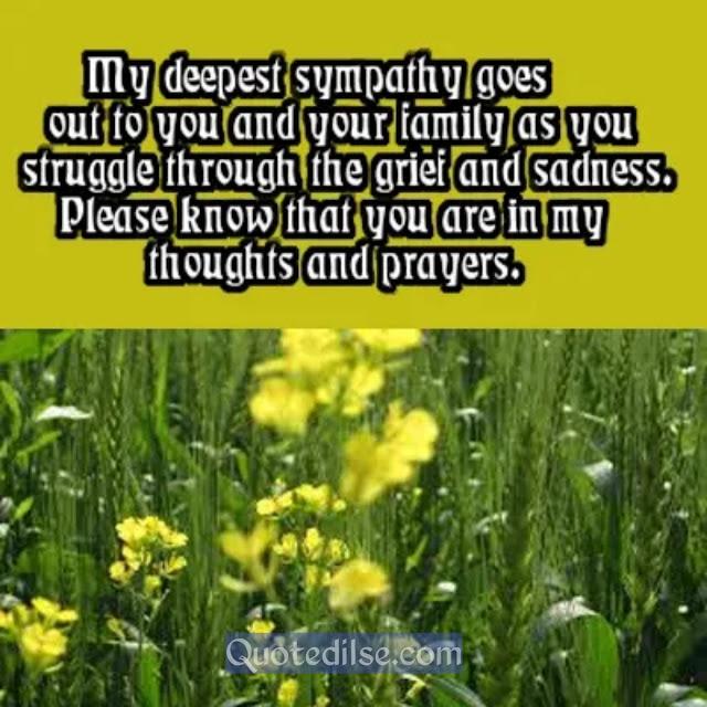 expression of sympathy