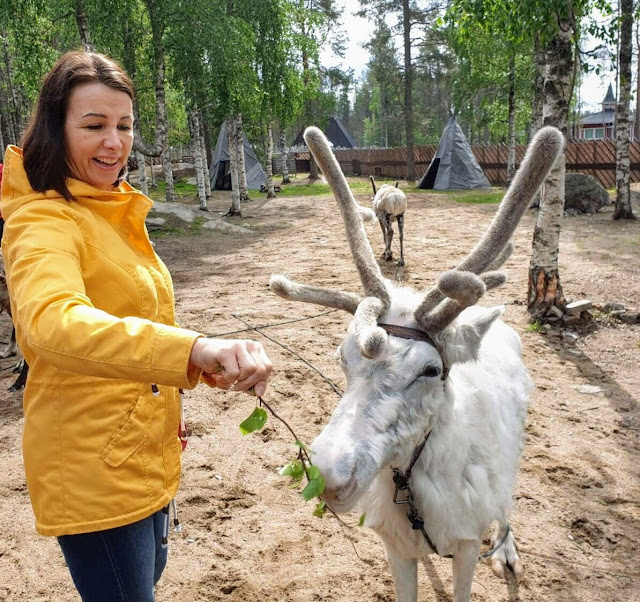 Is It possible to see  reindeers in Rovaniemi Lapland