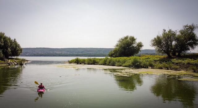 Golfuletul de langa Dunare