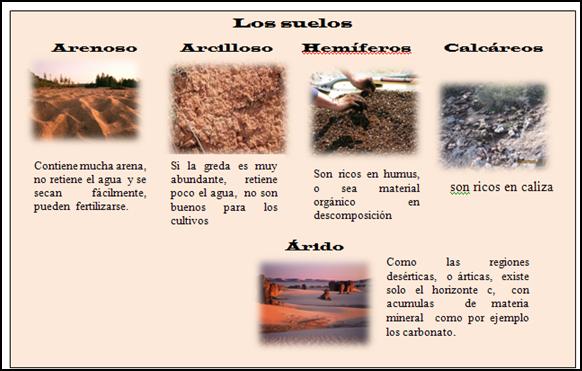 Area educativa tema el suelo for Como esta constituido el suelo