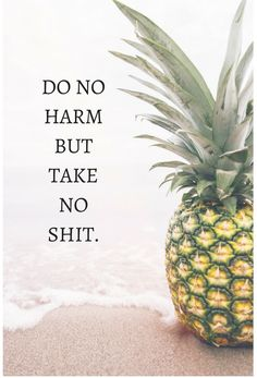 no shit pineapple quotes