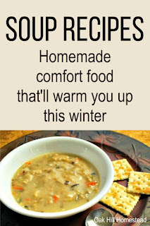 You're sure to find a new family favorite among these delicious homemade soup recipes! From a thick and creamy chicken noodle soup to amazing vegetable soups, you'll stay warm this winter!
