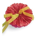 Giant Tissue Paper Flowers  - Step 5