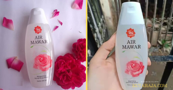 REVIEW: VIVA AIR MAWAR DAN TIPS MEMBUAT FACE MIST DI RUMAH DI JAMIN NYEGERIN