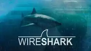 Wireshark Packet Analysis & Ethical Hacking: