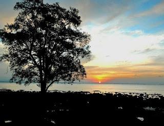 http://www.teluklove.com/2017/03/pesona-keindahan-wisata-pantai-paniis.html