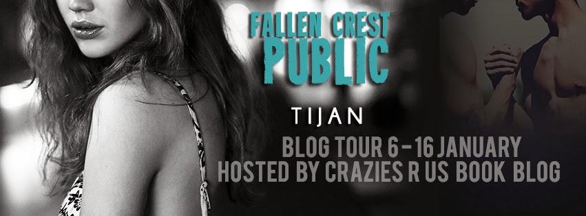 Taryn Lees Book Blog Book Review Blog Tour Goodies Fallen
