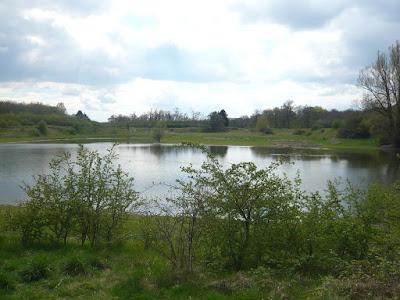 Ein kleiner See, welcher von Hügeln umgeben wird. Im Vordergrund sind kleine Büsche zu erkennen, während im Hintergrund Bäume wachsen