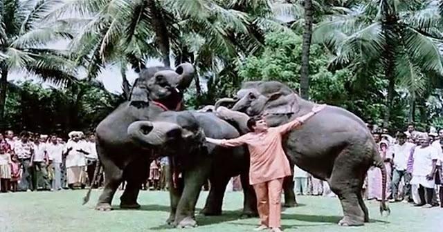 Flashback of 'Hathi mere Sathi'