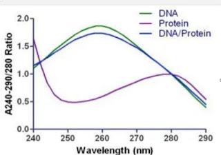 uji kualitas  DNA